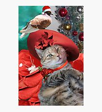 CHRISTMAS CELEBRATIONS OF PRINCESS TATUS CAT Photographic Print