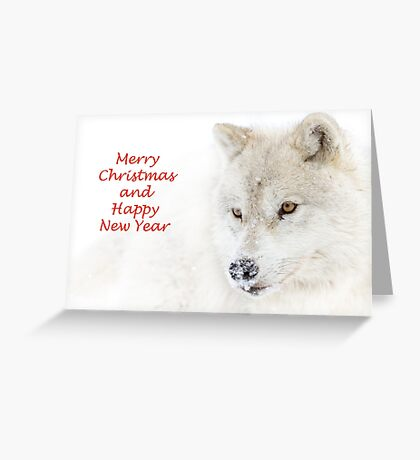 Christmas Arctic wolf Greeting Card
