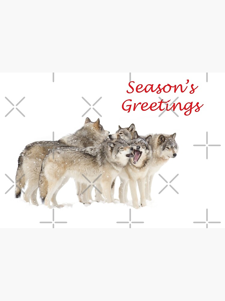 Christmas Wolf.Christmas Wolf Pack Photographic Print