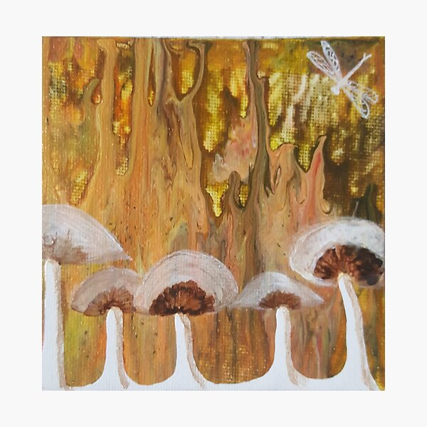 Mushrooms and dragonfly on mini pour Photographic Print