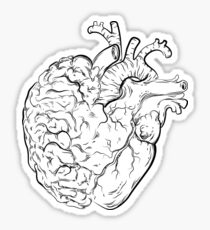 Follow your Heart and Listen to your Brain Sticker
