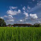 A dream house by Antony Pratap