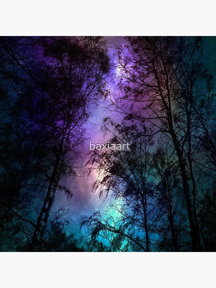 Night sky 1 by baxiaart