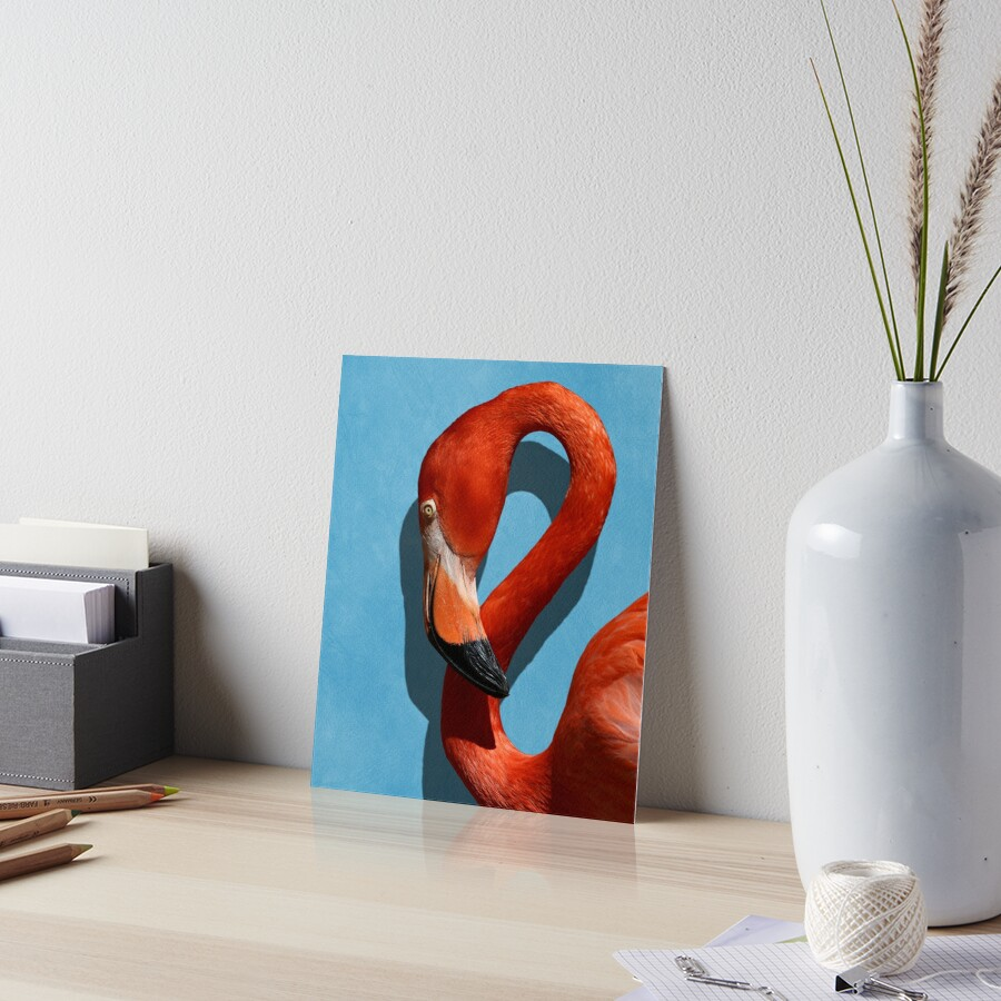 Studio Dalio - Orange Flamingo Profile on Blue Background Art Board