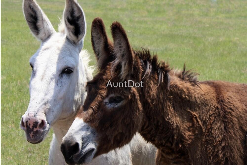 Donkey Pals by AuntDot