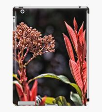 Red Foliage and Seeds iPad Case/Skin