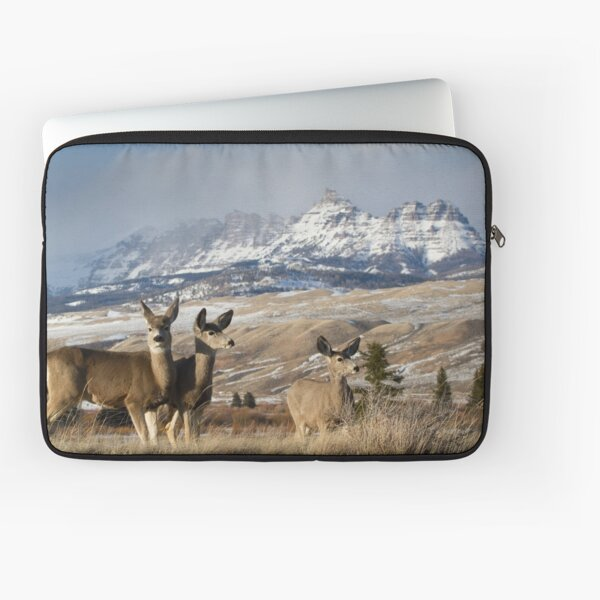 Ramshorn - What A Setting for These Blacktail Deer Laptop Sleeve