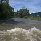 The Dunajec river behind the boat by Ilan Cohen