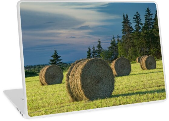 Hay Bales on Prince Edward Island by Randall Nyhof