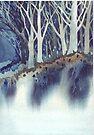 Dark Woods by Val Spayne