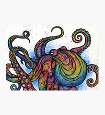 The Octopus Photographic Print