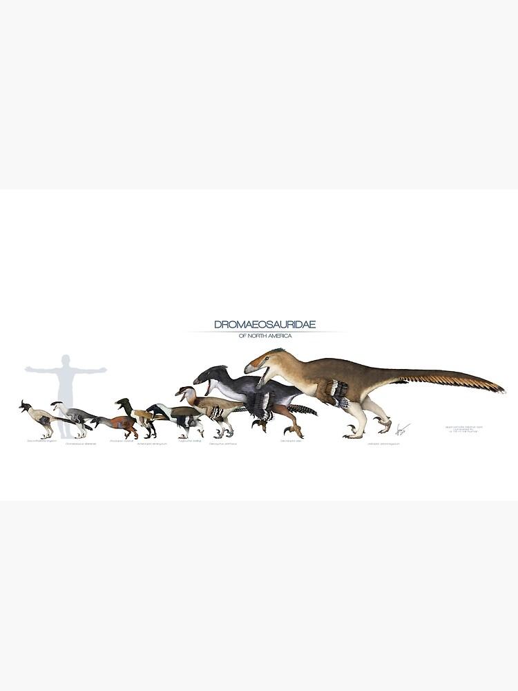 Dromaeosaurid Dinosaurs of north America by SerpenIllus