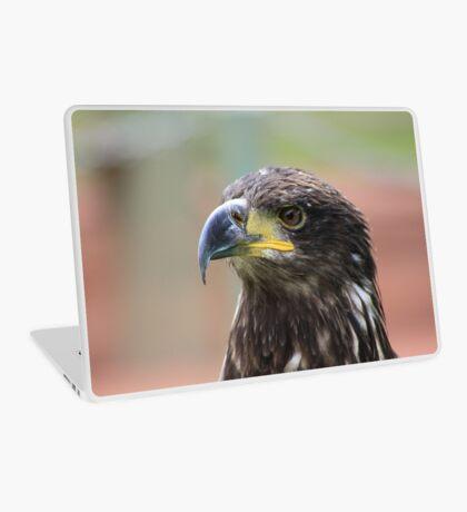 Juvenile Bald Eagle Laptop Skin