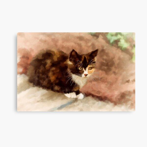 Calico Kitten Canvas Print