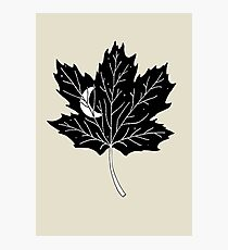 Moon Leaf- Maple Photographic Print