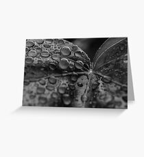 Wet Greeting Card