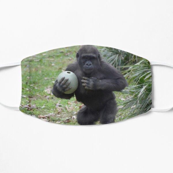 Gorilla Moke im National Zoo Flache Maske