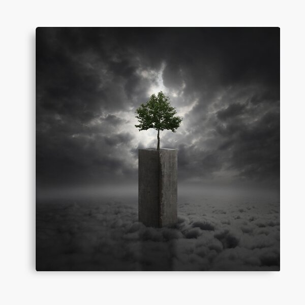 Against All Odds Canvas Print
