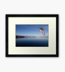 Flying with Humour Framed Print
