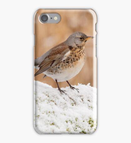Fieldfare iPhone Case/Skin
