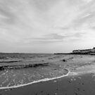 Port Charlotte Shoreline by humblebeeabroad