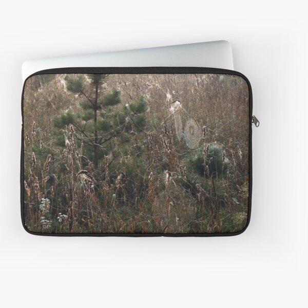 Grassland in spider webs or Spiderland Laptop Sleeve
