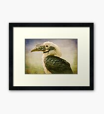 Perfectly Posed Framed Print