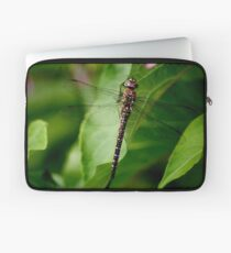 Draginfly Laptop Sleeve