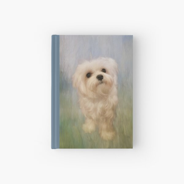 Can We Play Now Hardcover Journal