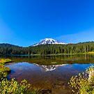 Mount Rainier by RandyHume