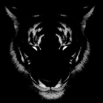Lone Tiger by coltrane004