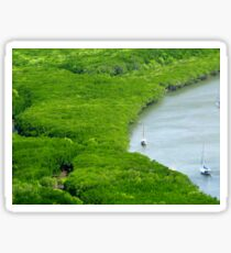 View to Mangroves - Cooktown Sticker