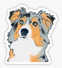 Mini Australian Shepherd Dog (Merle) - Yellow Background Sticker