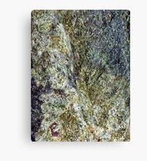 Stone Hard Canvas Print