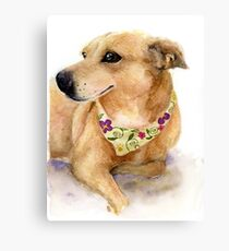 Nixie the Carolina Dog in Watercolor Canvas Print