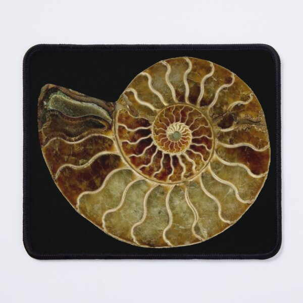 Ammonite Fossil Mouse Pad