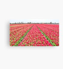 Dutch Tulips part 7 Canvas Print