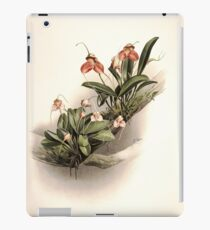 Reichenbachia Orchids illustrated and described by F. Sander 1888 V1-V2 013 iPad Case/Skin