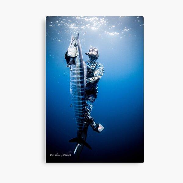 Spearfishing wahoo Canvas Print