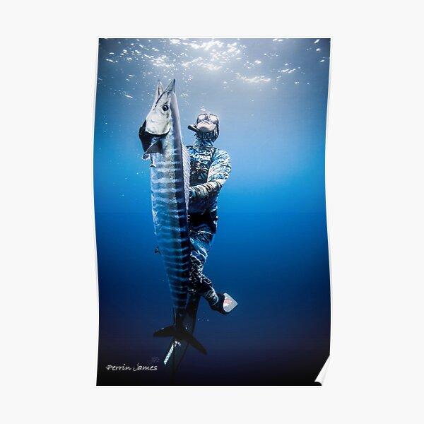 Spearfishing wahoo Poster