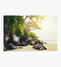 Tropical beach. Vintage effect. Photographic Print