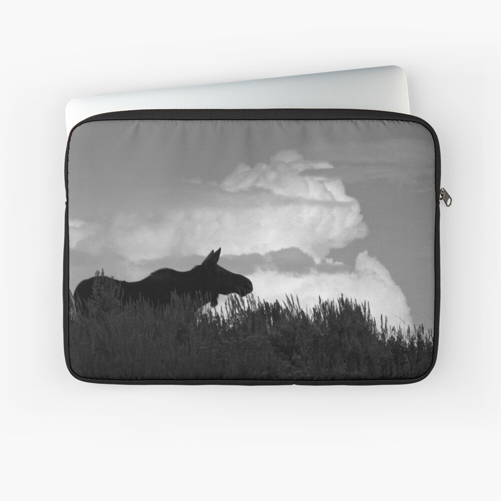 Looking For Her Beau Laptop Sleeve