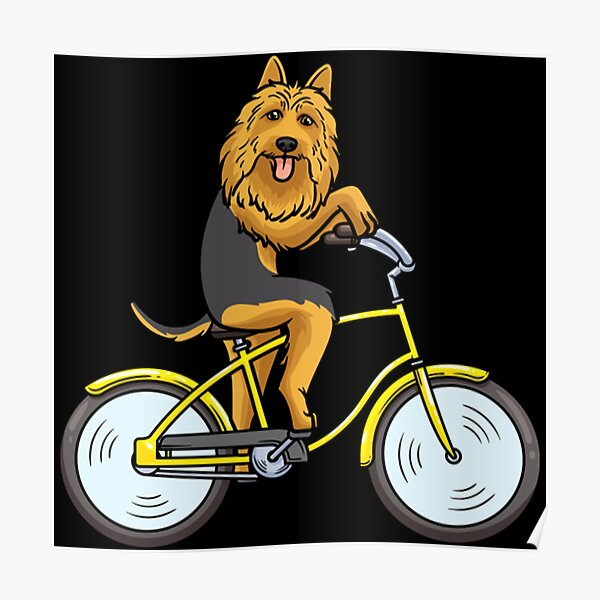Australian Terrier Dog With Bike  Poster