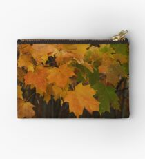Fall Colors Studio Pouch