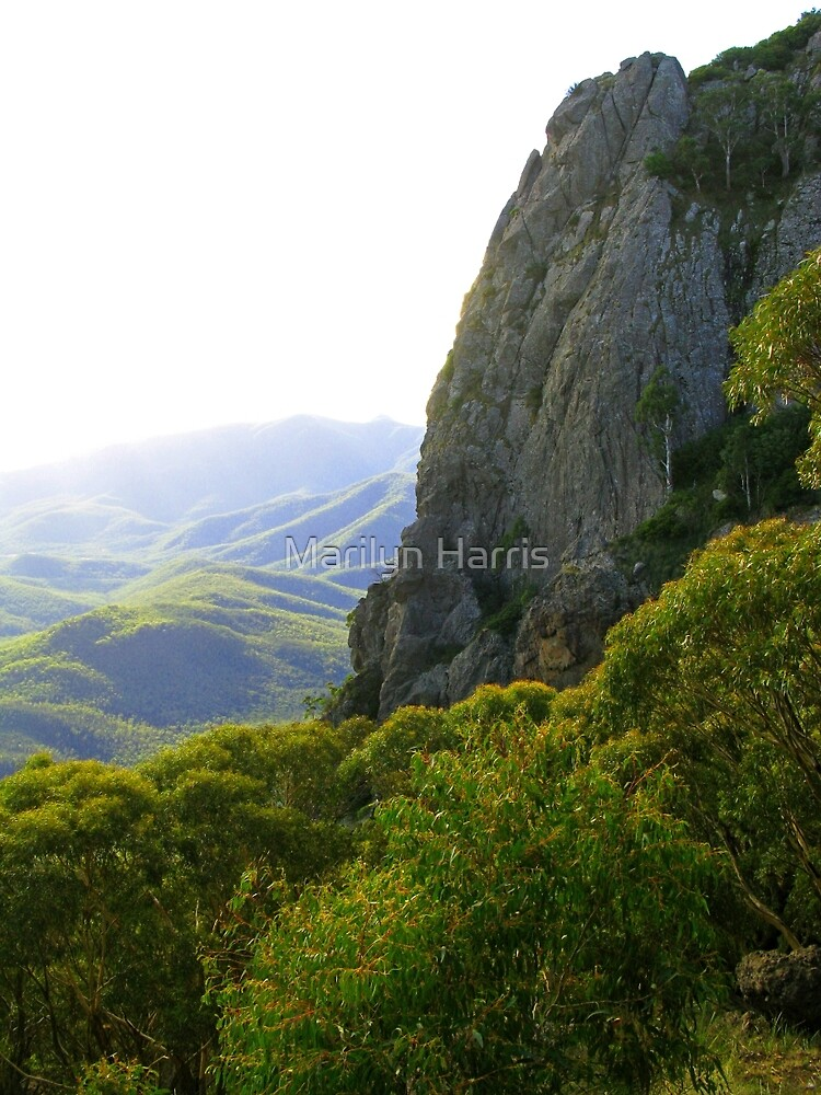 View from Mt Kaputar by Marilyn Harris