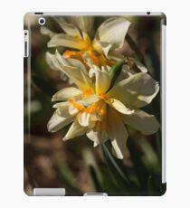 Daffodils iPad Case/Skin
