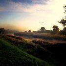 Misty Morning Walk by Simon Duckworth