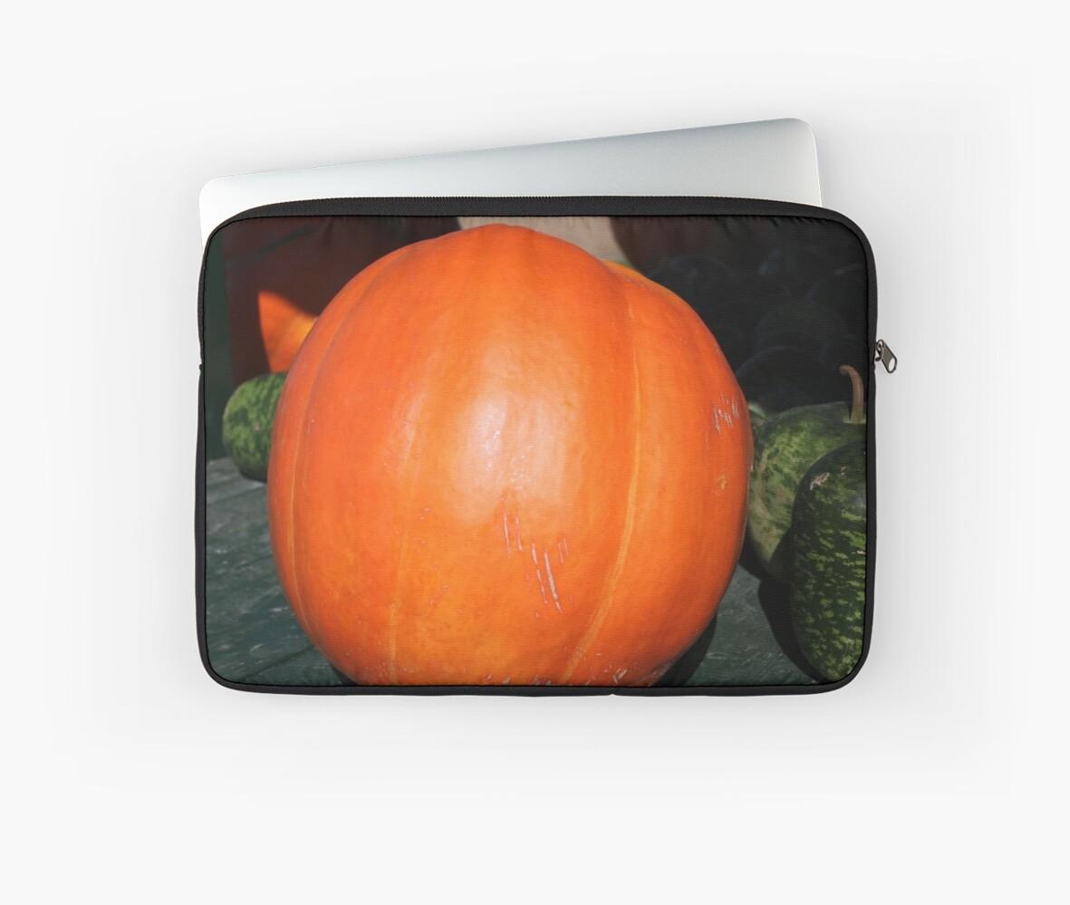 A Pumpkin From The Pumpkin Patch by WeeZie