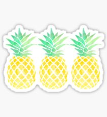 3 pineapples in a row Sticker