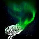 Borealwolf by IonAnderArt